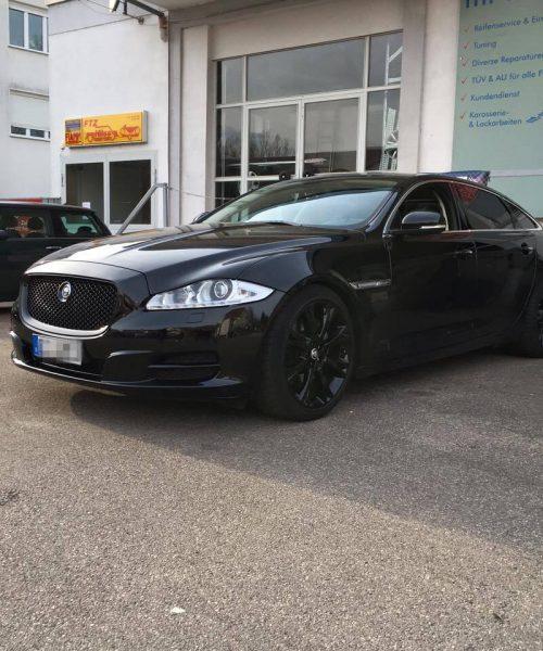 Jaguar-schwarz